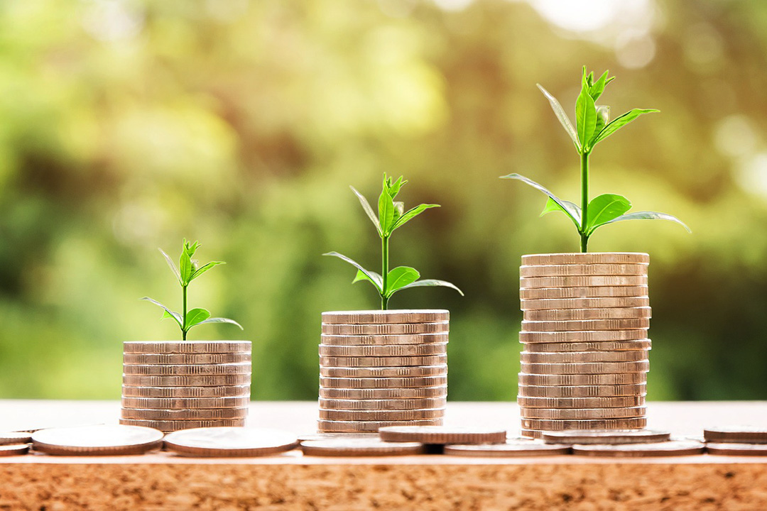 Stacks of coins with plant shoots growing ROI